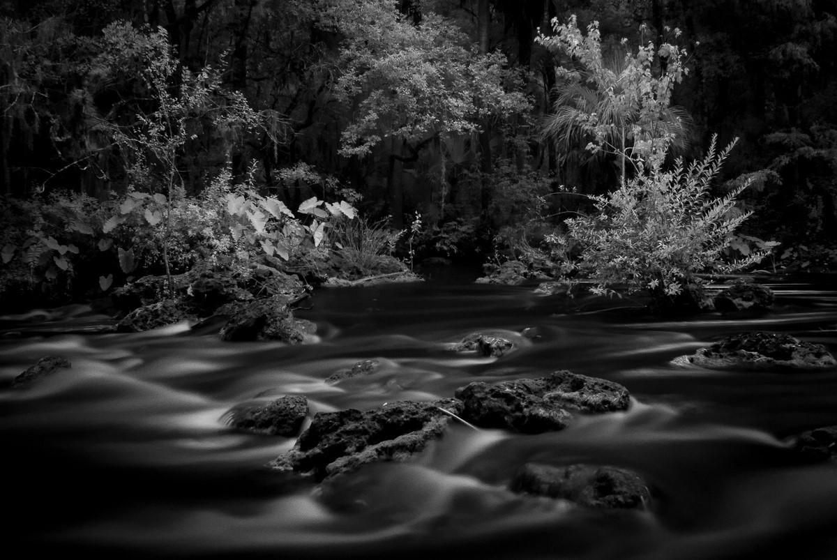 Hillsborough River Rapids - Fine Art Black and White - Florida