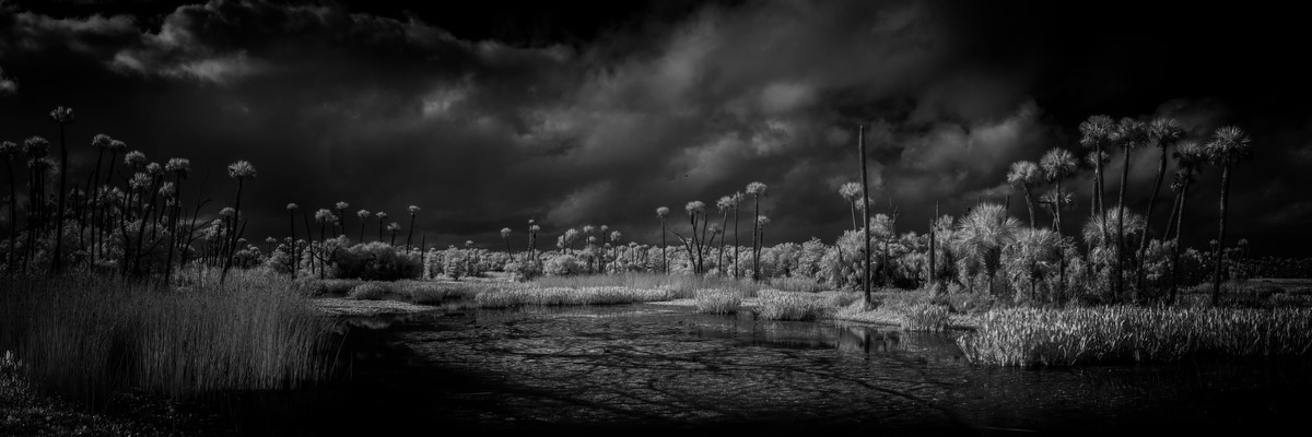 Outer Bands - Fine Art Black & White Panoramic 3:1 Ratio