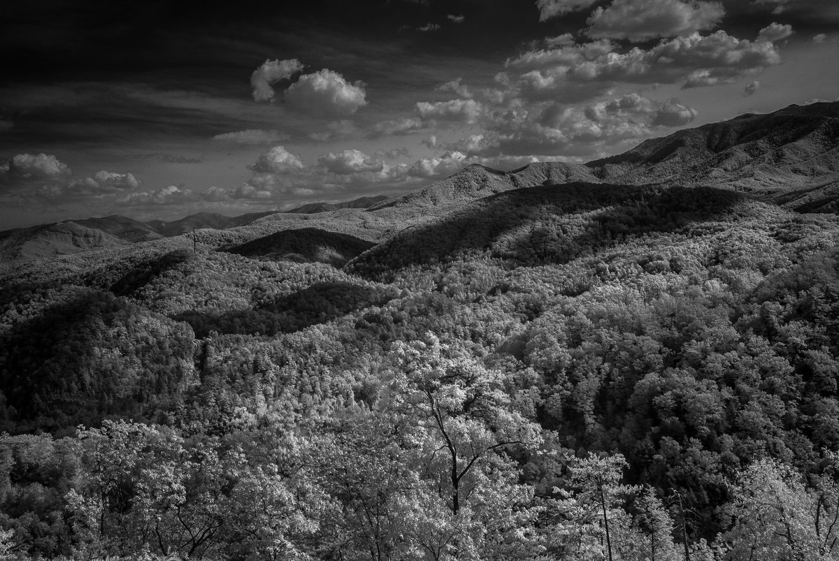 Great Smoky Mountains - Fine Art Black and White - Various Locations