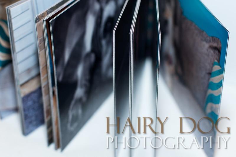 dog-album-4 - Little Black Albums
