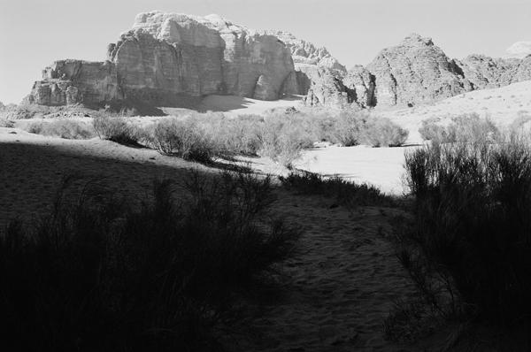 Wadi Rum (Jordan) #1 - Petra