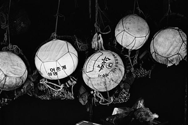 Still Life (Jeju) #5 - Korea