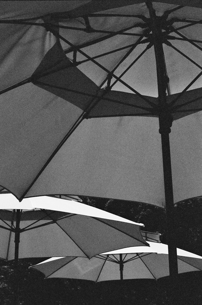 Umbrellas (Seoul) #1 - Selected Images