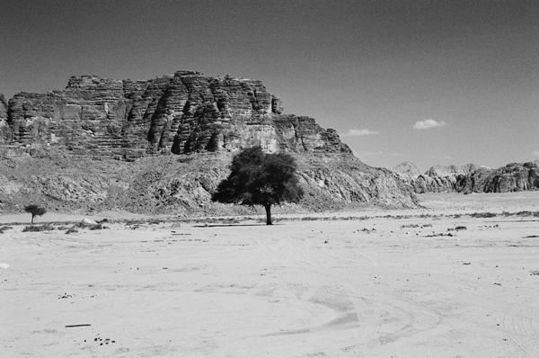 Wadi Rum (Jordan) #3 - Petra