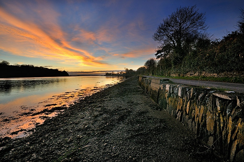 East Ferry - Landscape Ireland
