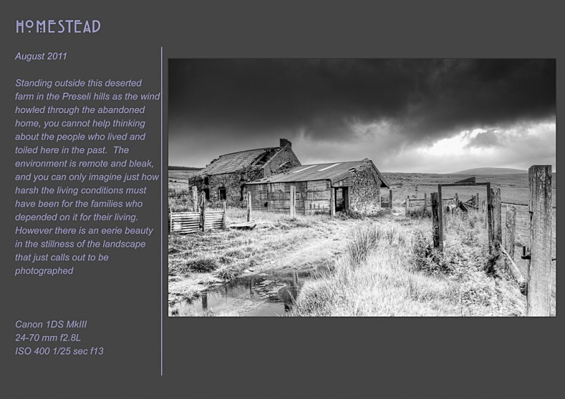 Homestead - Abandoned & Discarded