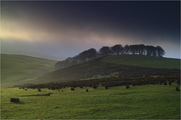 Misty Breakthrough - Yorkshire