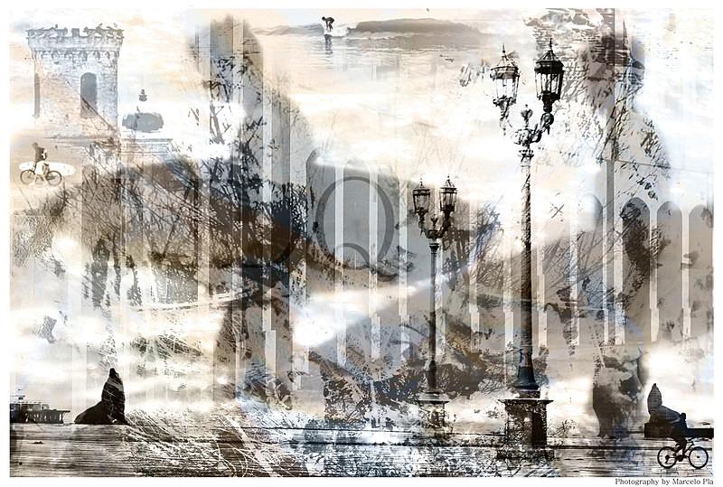 'Mar del Plata' - 'Dreaming'