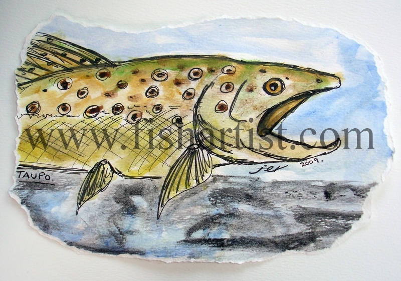 Taupo Brown Trout Watercolour. - Watercolours of Taupo Trout.