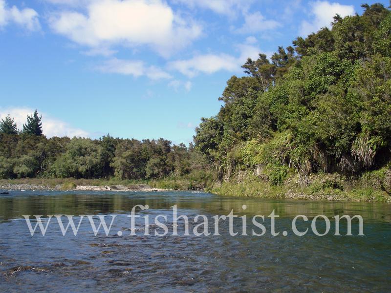 Kamahi Pool. - Trout of the Tongariro River.