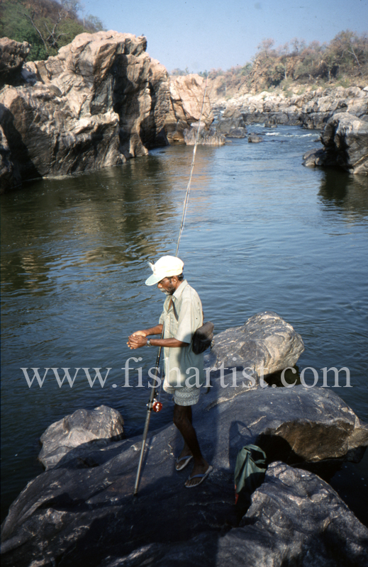 Subhan a River God. - Mahseer Fishing India.