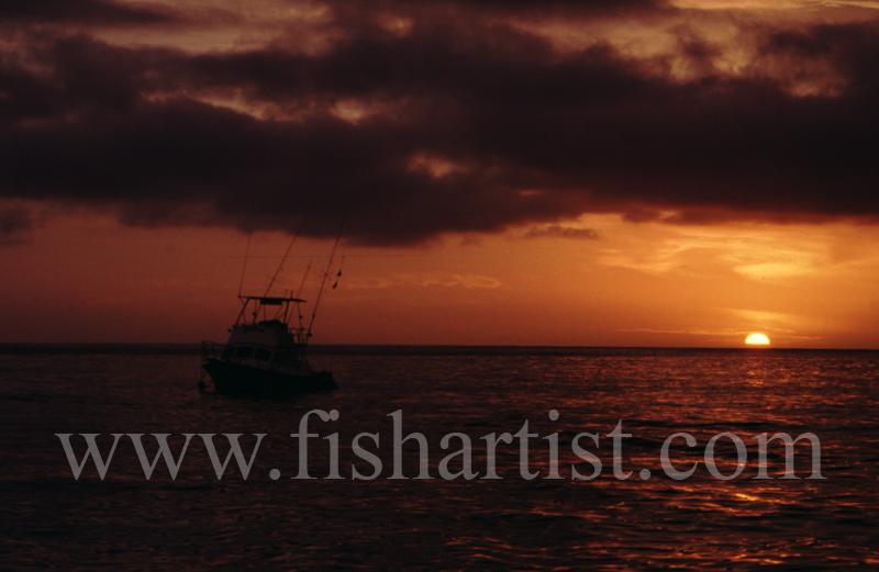 Big Game Fisherman's Sunset. - Marlin Fishing.