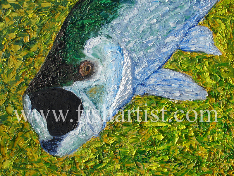Tarpon. - Fish Art for Fishermen.