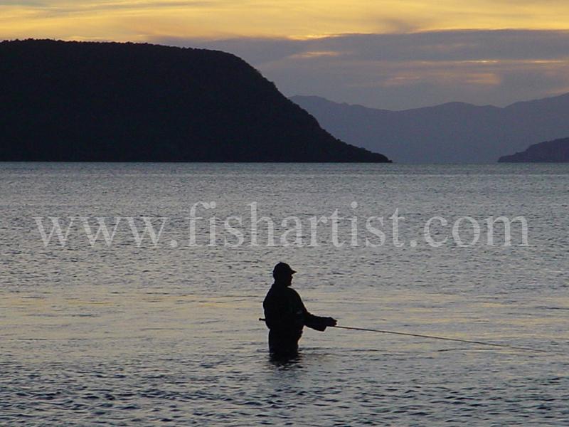 Waitahanui Local. - Trout Fishing - Taupo New Zealand.