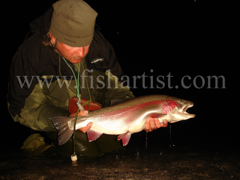 Trophy 8lb Waitahanui Rip  Jack. - Trout Fishing - Taupo New Zealand.