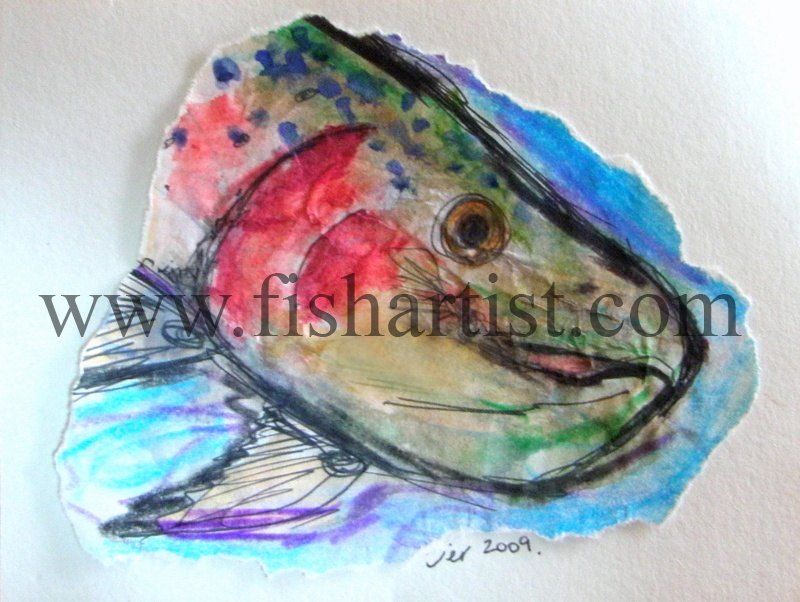 Cicada Caught Taupo Trout Watercolour. - Watercolours of Taupo Trout.