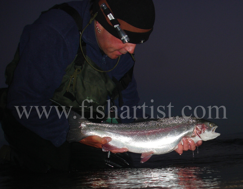 Early Morning Taupo Hen. - Trout Fishing - Taupo New Zealand.