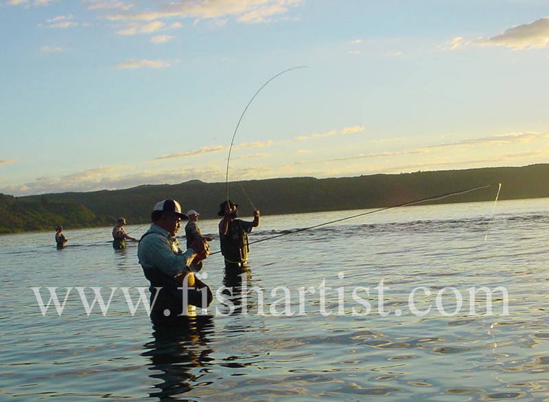 Taupo Fisherman - Got one! - Trout Fishing - Taupo New Zealand.