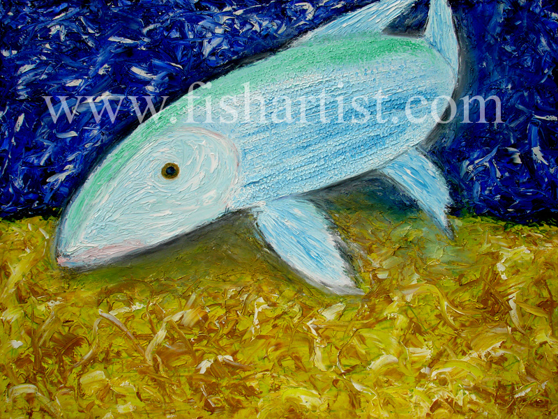 Underwater Swimming Bonefish. - Fish Art for Fishermen.