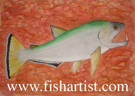 Payara Fishing. - Fish Art for Fishermen.