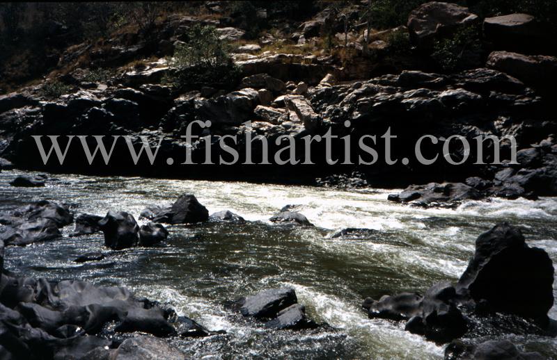 Mahseer Water. - Mahseer Fishing India.