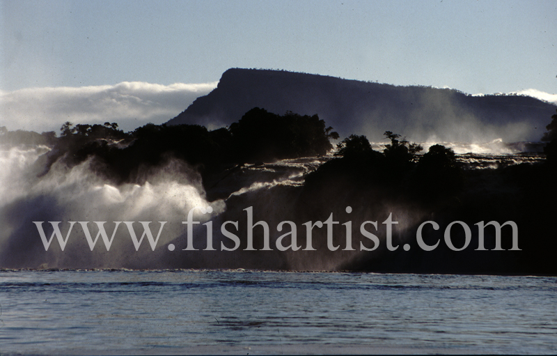 Mist. - Eyes of a Fisherman.