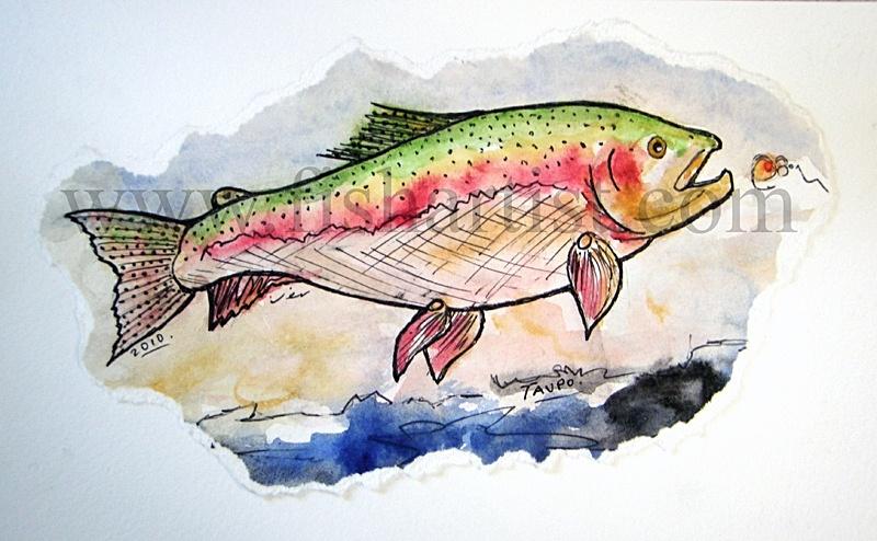 8lb Waitahanui Taupo Jack Watercolour. - Watercolours of Taupo Trout.
