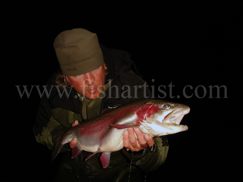 Taupo Trophy 8lb Rainbow Jack Head On. - Trout Fishing - Taupo New Zealand.
