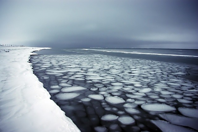 The Arctic - Seascape