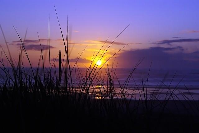 Oregon Sunset - Seascape
