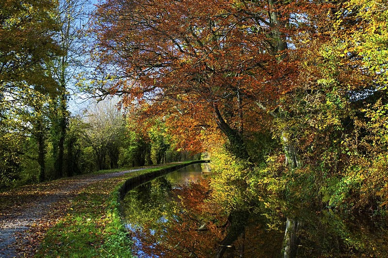 Brecon and Monmouth canal. - Monmouth & Brecon Canal