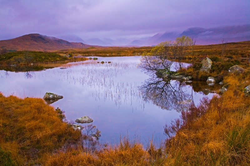Rannoch Reflections - Scotland