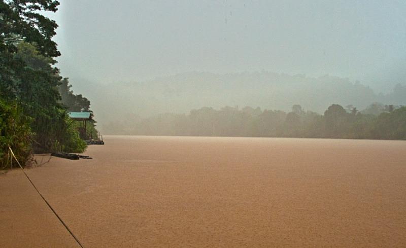 Kinabantangan River, Sabah - Borneo