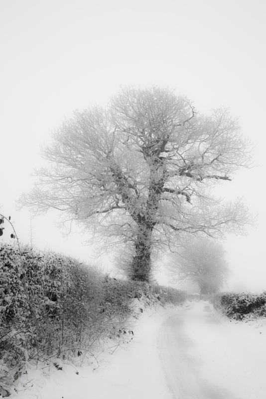 Snow and Mist, Barnes Lane - Kings Langley set