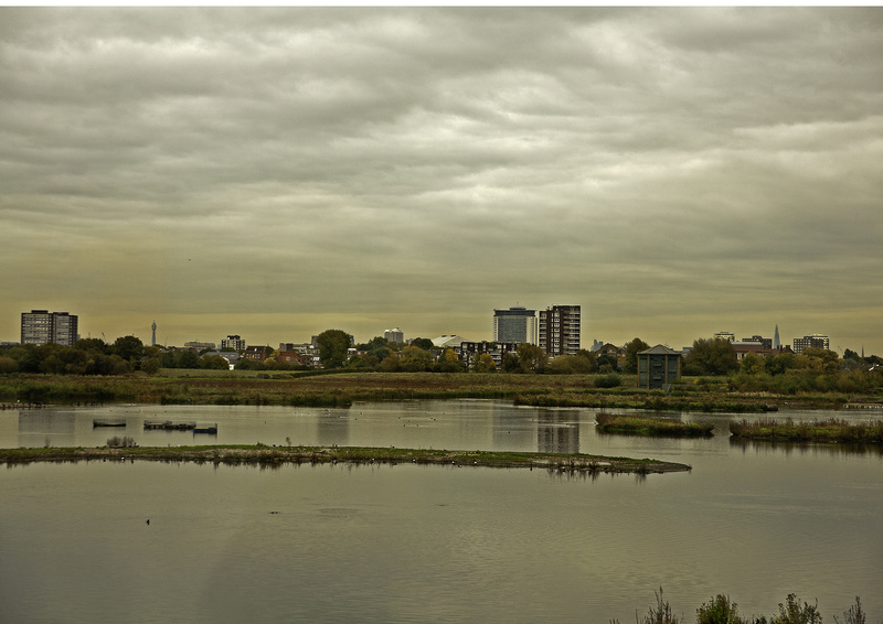 WWT Barnes - Unsustainable Cities? the on-line 2014 RGS Exhibition