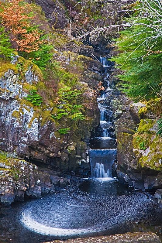 Rogie Falls - Scotland