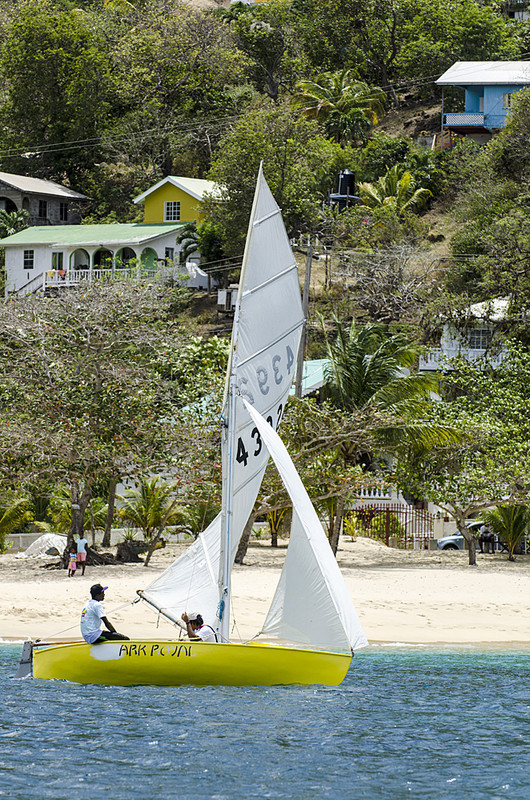 DSC_4880 - Saturdays racing - Local Double Enders - Bequia Easter Regatta 2016
