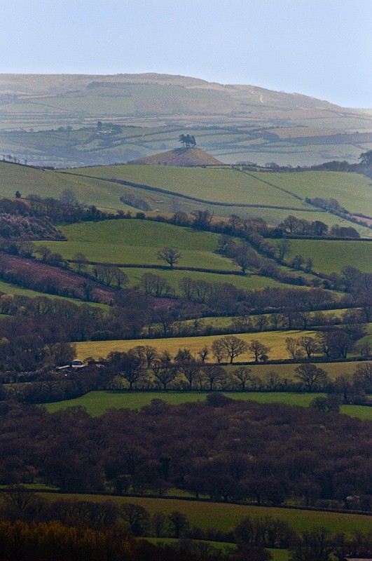 Colmers Hill across the Marshwood Vale
