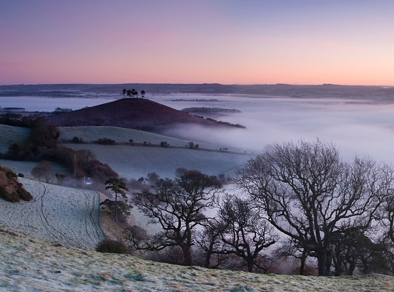 Morning Mists over Colmers Hill - Landscapes