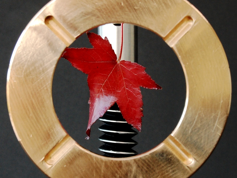 Last Leaf detail - Pedestal Sculptures