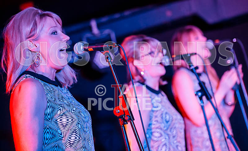 The Blondettes-28 - THE BLONDETTES