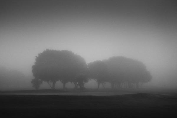 - Landscapes