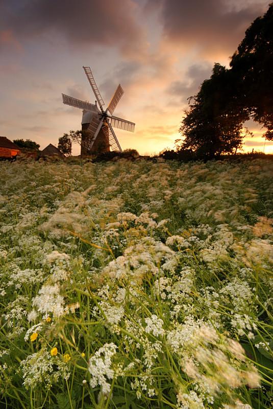 Heage Windmill - Woods and Farmland