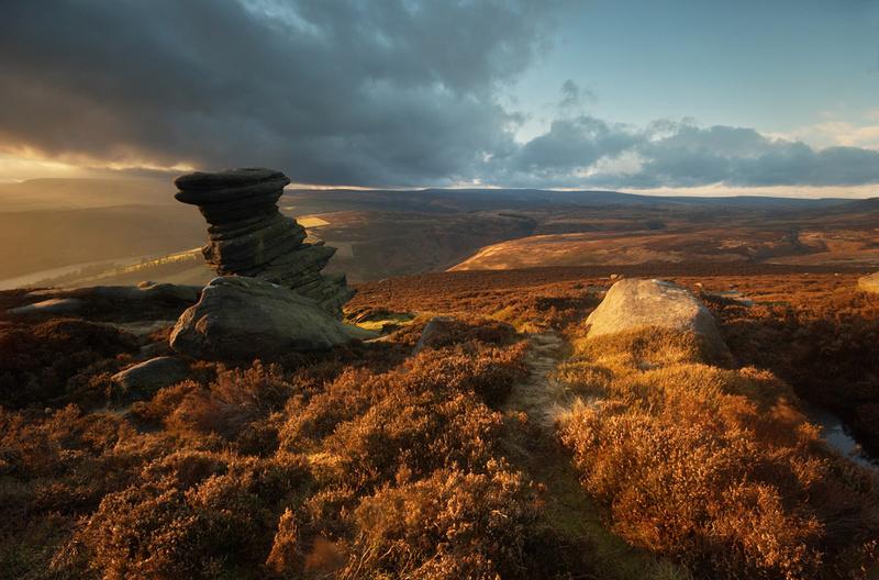 Salt Cellar - Moors and Edges