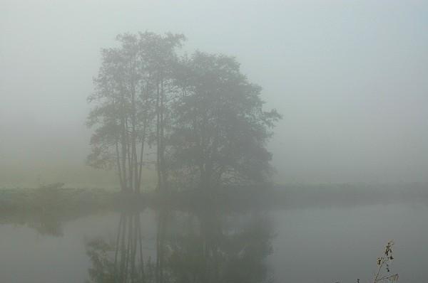 Boyne fog 3 - Landscapes