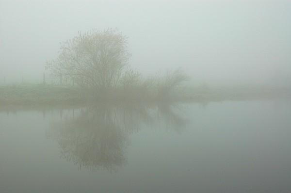 Boyne fog 2 - Landscapes