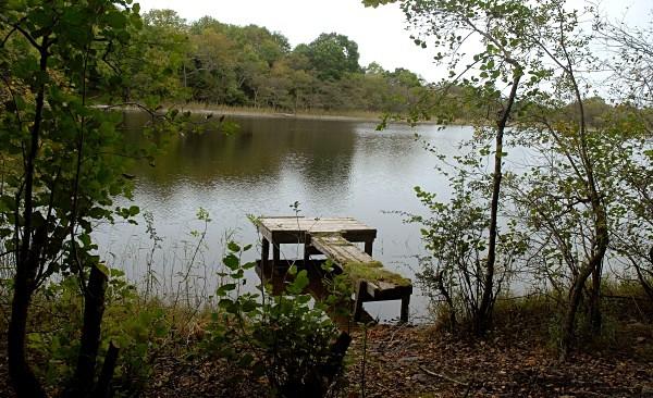 Derreen Lake02 - Landscapes