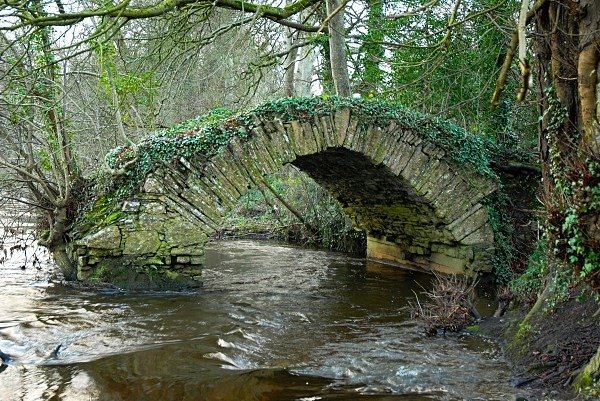Babes Bridge01 - Landscapes