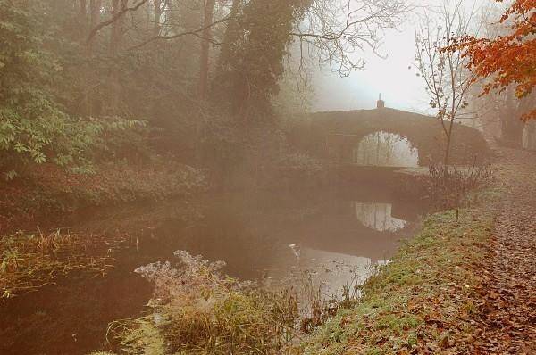 Boyne canal fog - Landscapes