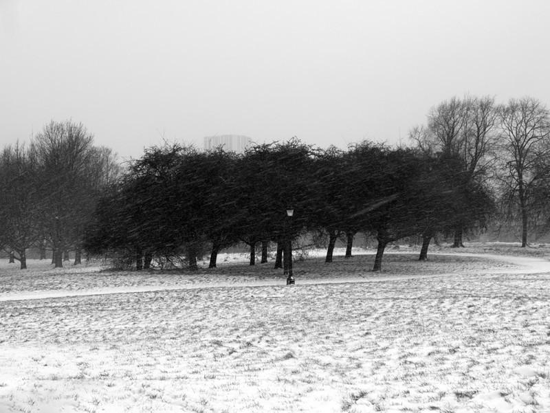 Primrose Hill snow series - London street photography photos 8